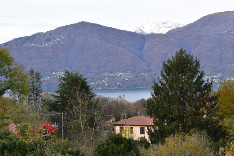vista lago